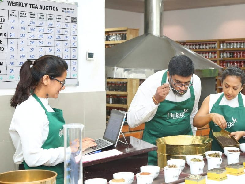 employees tasting tea samples